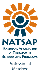 NATSAP-logo-words